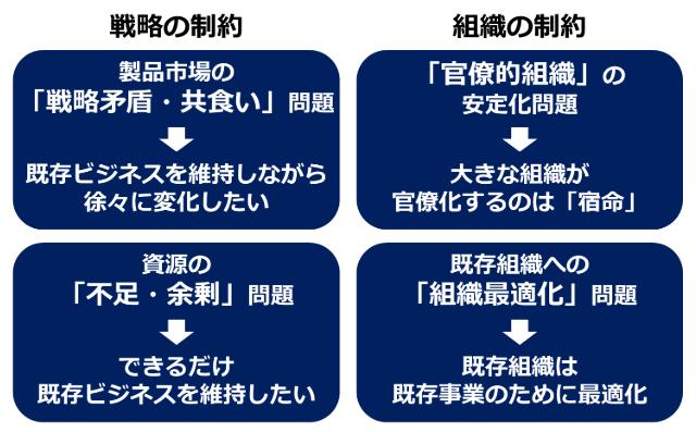 戦略選択における制約